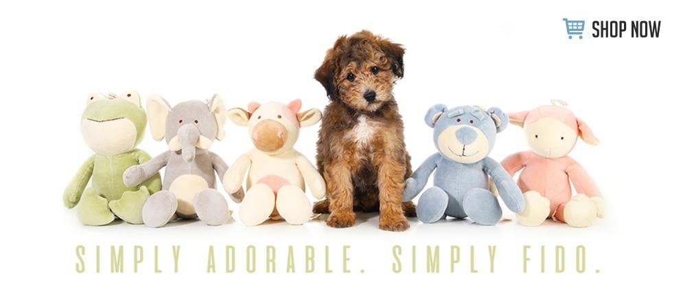 Teddybear Schnoodles